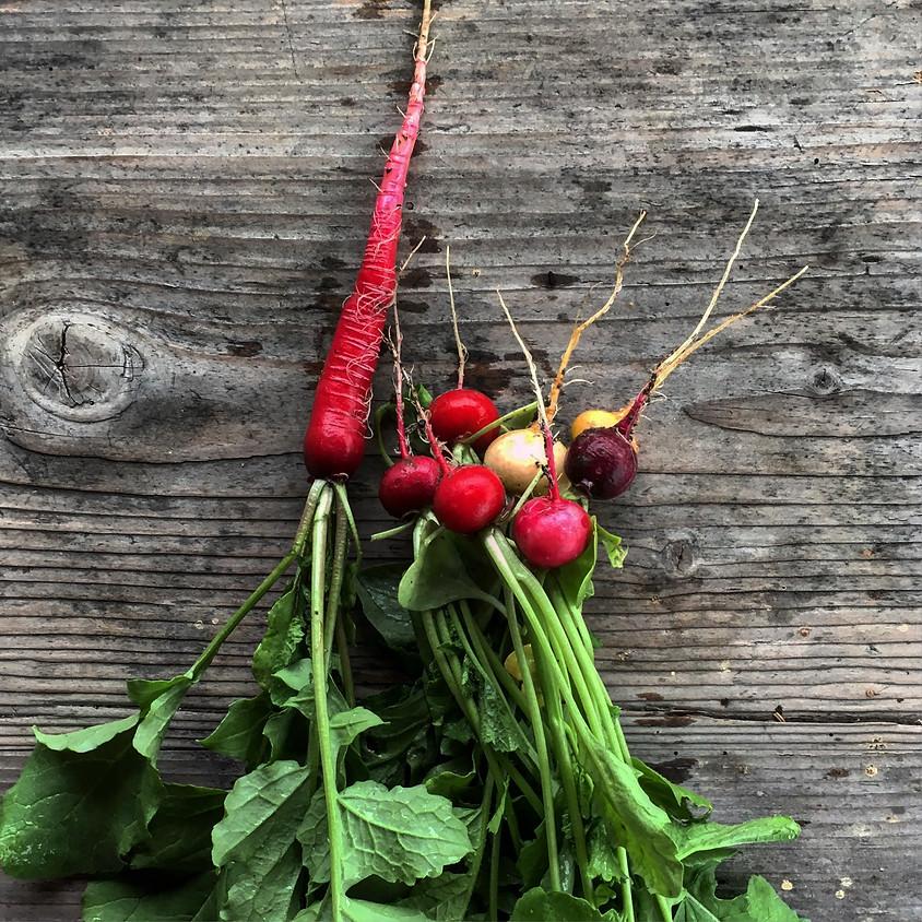 Veganer Frühling - Koch dich glücklich