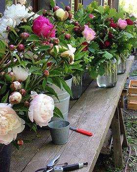Blumenacker und Werkstatt.jpg