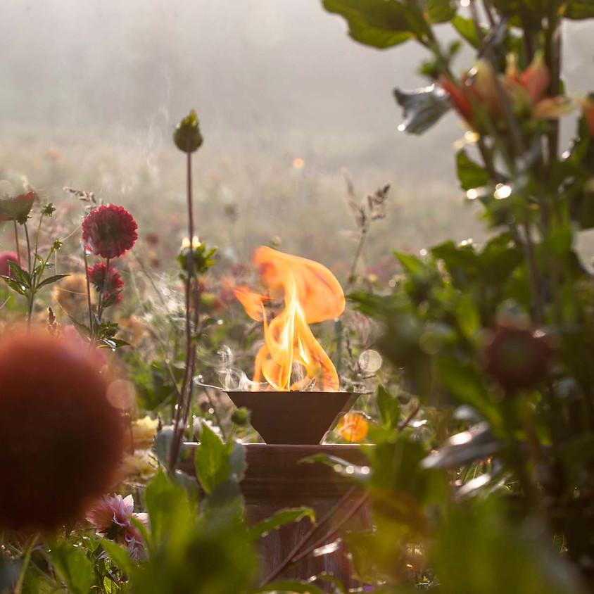 RÄUCHERWERK aus dem eigenen Garten Ganztagesseminar