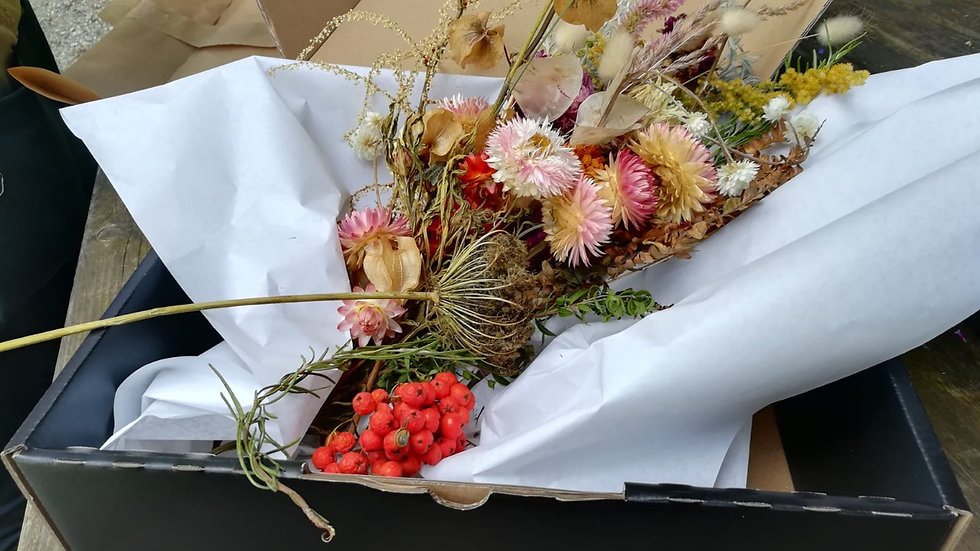 DIY Paket Trockenblumen