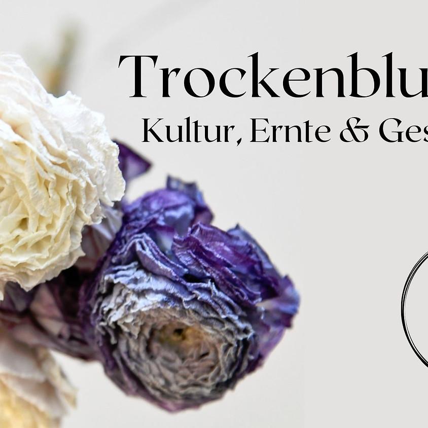 ONLINE Workshop : Trockenblumen zwischen Trend und Traditon