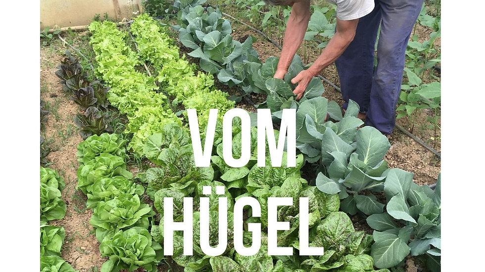 Ratgeber Bio Garten Praxis und Gemüse Raritäten