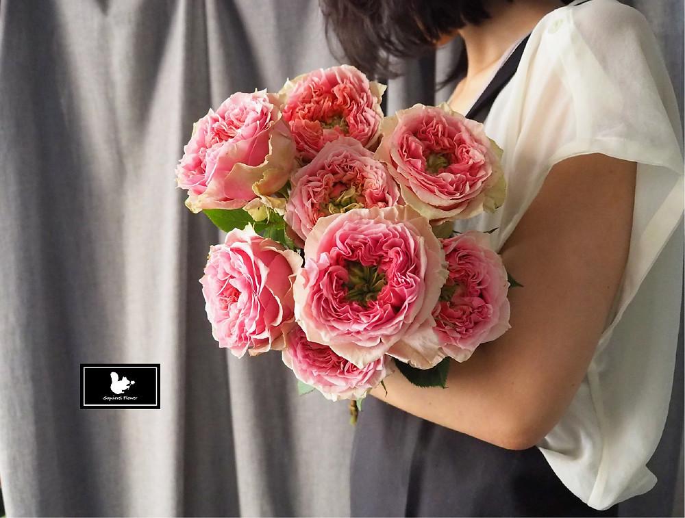 庭園玫瑰 Garden Rose