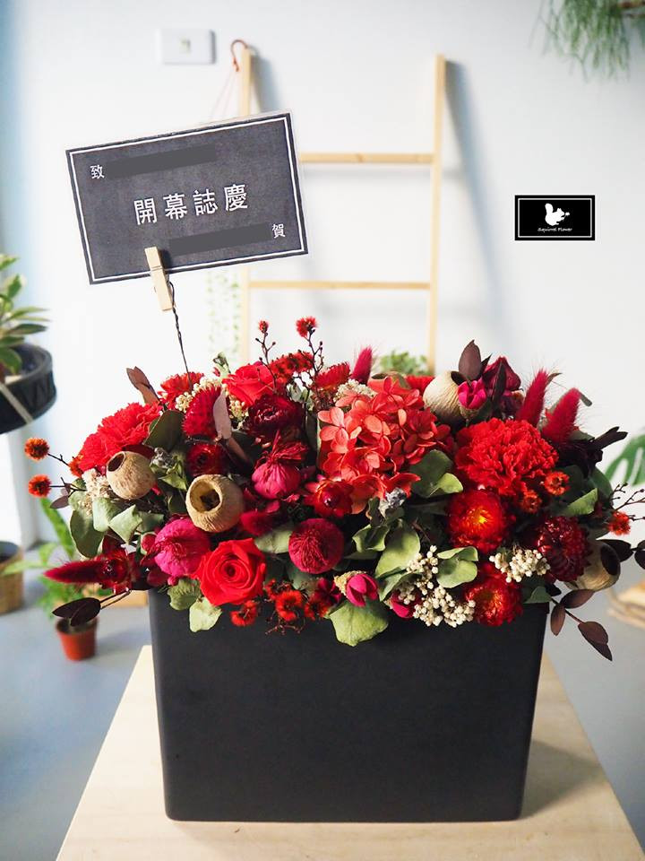 紅色乾燥盆花