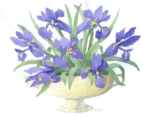 Iris Bowl Greeting Card