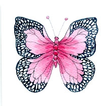 Pink Butterfly Gift Card