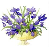 Iris Bowl Gift Card