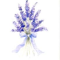 Lavender Gift Card