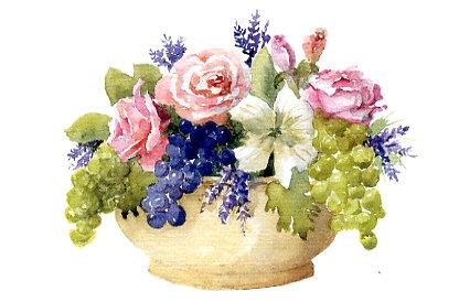 Grapes & Roses Greeting Card
