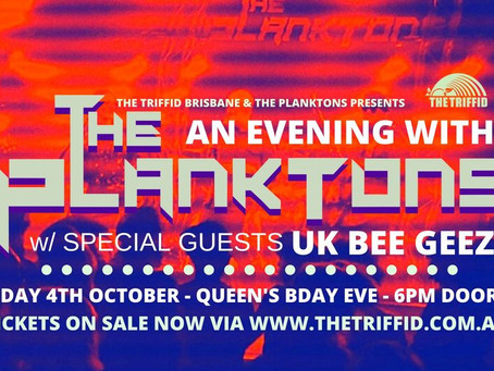 What Lockdown?  An Evening With The Planktons