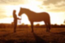 horse gift card photoshoot