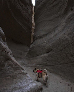 _Why these is called 'slot canyons,' aga