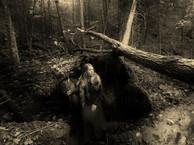 8-Samhain (1280x853).jpg