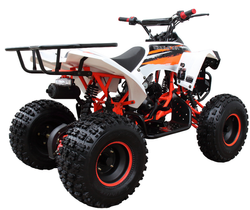 Mid 125R Sport 3125B (8 Wheel) 005