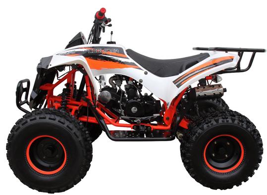 Mid 125R Sport 3125B (8 Wheel) 006