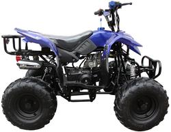 Mini 110 Sport 3050B ATV 007