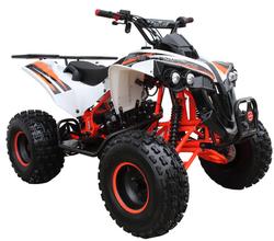Mid 125R Sport 3125B (8 Wheel) 001