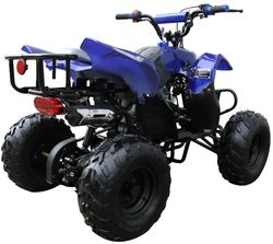 Mini 110 Sport 3050B ATV 006