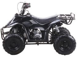 MINI 110 SPORT 3050C (6 Wheel)  014