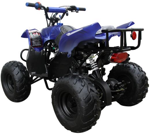 Mini 110 Sport 3050B ATV 004