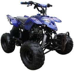 Mini 110 Sport 3050B ATV 001