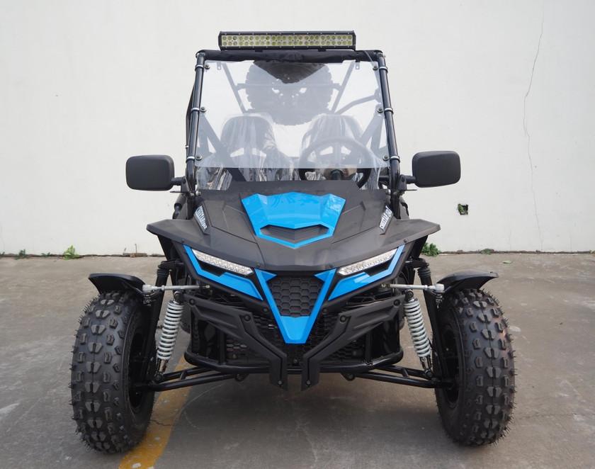 Cheetah 150X Blue (7).JPG