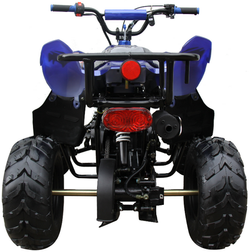 Mini 110 Sport 3050B ATV 005
