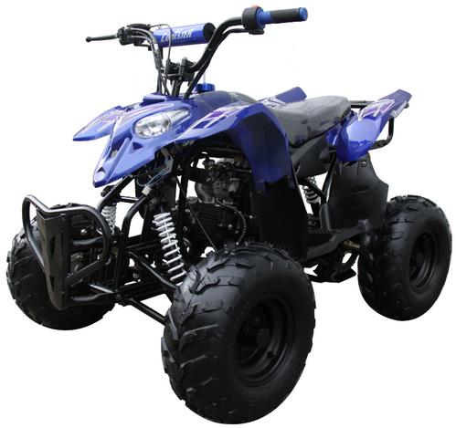 Mini 110 Sport 3050B ATV 002