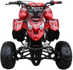 Mini 110 Sport 3050B ATV 009