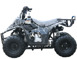 MINI 110 SPORT 3050C (6 Wheel)  003