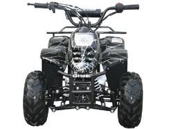 MINI 110 SPORT 3050C (6 Wheel)  007