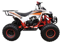 Mid 125R Sport 3125B (8 Wheel) 002