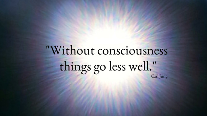 """""""Without consciousness, things go less well."""""""