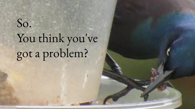 So. You think you've got a problem?