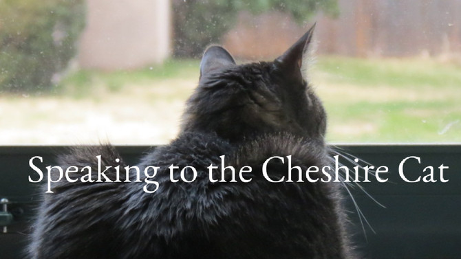 Speaking with the Cheshire Cat