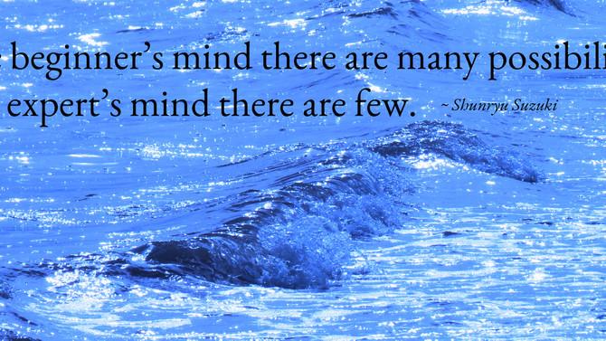 Revisiting beginner's mind