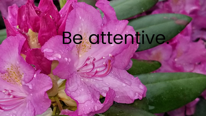 Be attentive