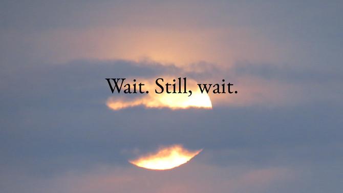 Wait. Still, wait.