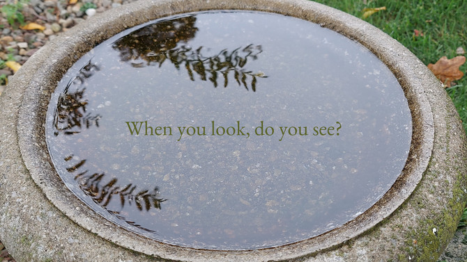 When you look, do you see?