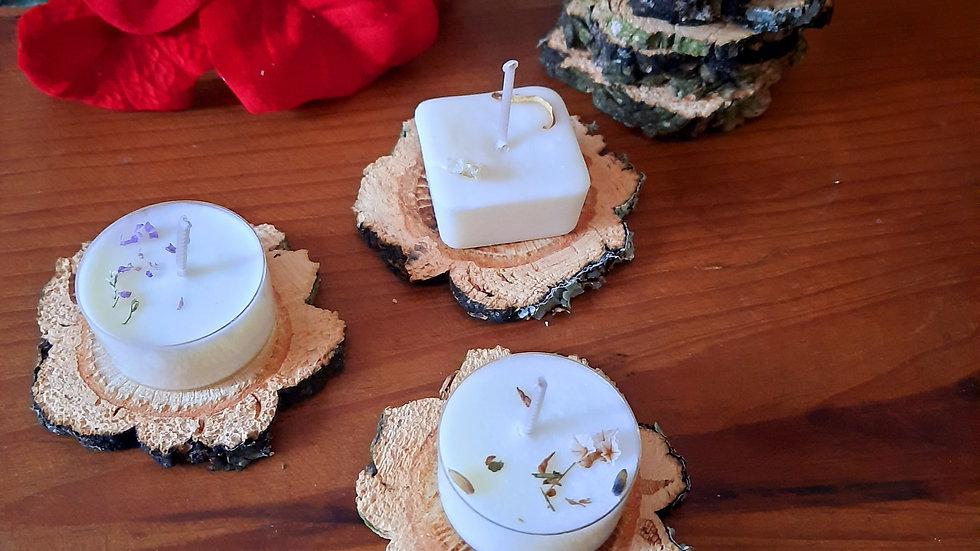 Mini Star Wooden slices