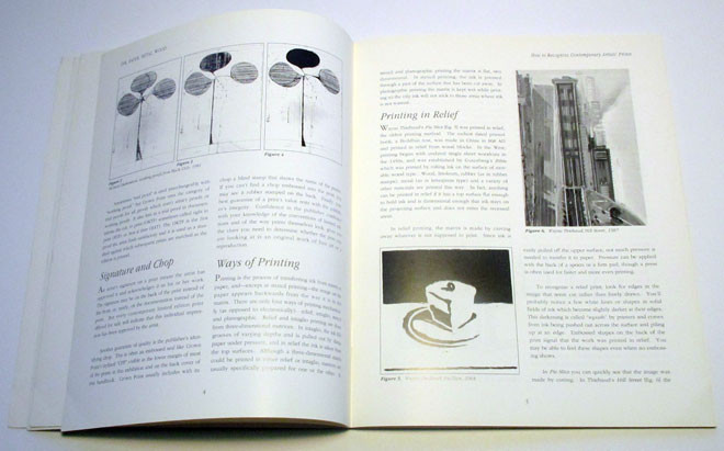 Informational Book Art Direction, Design & Production