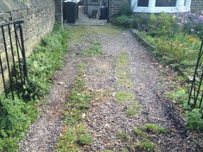 Driveway before installation
