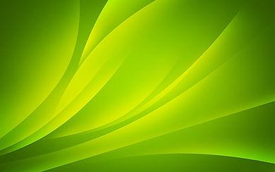 Pro Fit Green BG.jpg