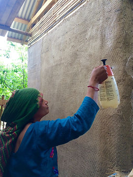 Treating straw bale walls with borax