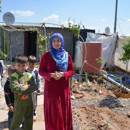 Home Garden Competitions in Domiz Refugee Camp