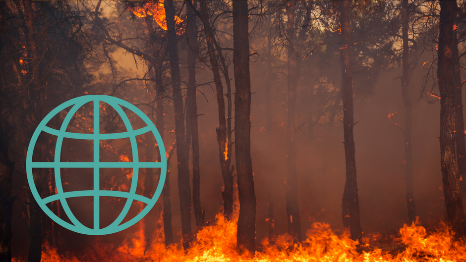 Re-Alliance's Statement on the latest IPCC Report