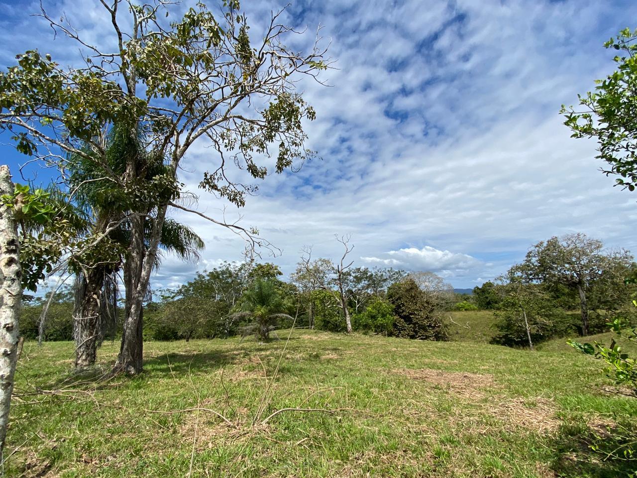 Propoertfor sale Montezuma Costa Rica