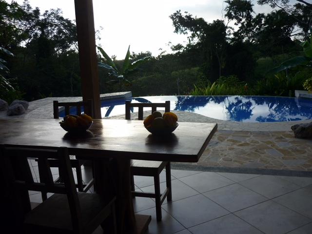 View of Pool at Dawn P1040083