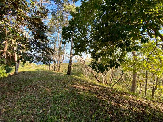 oceanview lot for sale montezuma