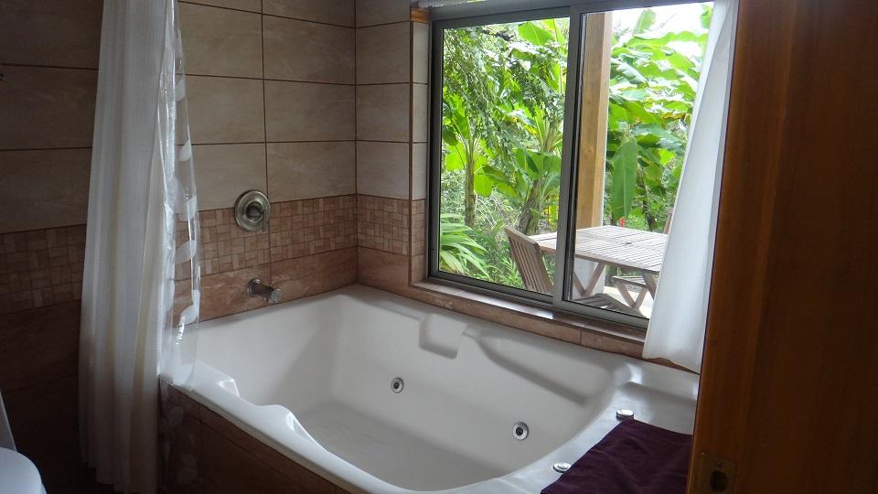 Master bathroom View of Jacuzzi tub - DSC02963